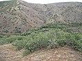 Karaboğaz ve İncebel - panoramio.jpg