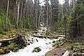 Karst springs Alberta Canada (27336556534).jpg