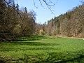 Katzenbachtal - Blick talabwärts.jpg