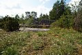 Kauparve - KMB - 16001000146846.jpg