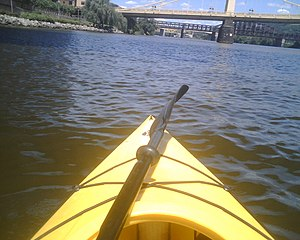 This is the view from my kayak on the river. T...