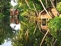 Kerala backwater scene.jpg