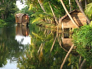English: Backwater in Kerala, India