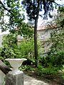 Kharkiv natural sanctuary Institute 1.JPG