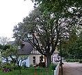 Kloster Mehlbeere 2019-06-11 ama fec.jpg