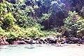 Ko Libong, Kantang District, Trang, Thailand - panoramio (7).jpg