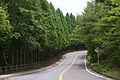 Kobe Oku-maya Driveway03n4272.jpg