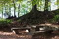 Kollenbergpark as-eos-15m-rgb-2014-10-18-3279 (15383849918).jpg