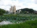 Korea-Gwangju-Lotus pond-01.jpg