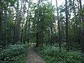 Kotelniki, Moscow Oblast, Russia - panoramio (105).jpg