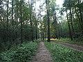 Kotelniki, Moscow Oblast, Russia - panoramio (107).jpg