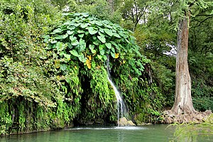 National Register of Historic Places listings in Burnet County, Texas - Image: Krause springs natural pool 2013