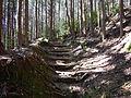Kumano Kodo Dainichigoe World heritage44.JPG