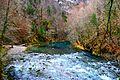 Kupa spring (Risnjak national park) 2.jpg