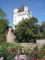 Kurfürstliche Burg 635-h.jpg