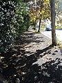 L'autunno a Roma - panoramio.jpg