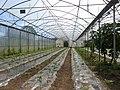 L'exploitation agricole du lycée de Suscinio.jpg
