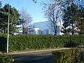 L'usine triballat a noyal sur vilaine - panoramio.jpg