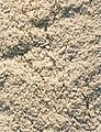 LPCC-773-Farinasses d'arròs.jpg