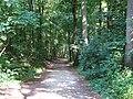 LSG Waldgebiet des Tiergartenwaldes PM-18-01.jpg