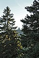 La Dôle - panoramio (104).jpg