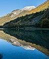 Lac de Montriond 59.jpg