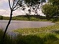 Laguna de Sobrado - panoramio.jpg