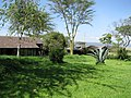 Lake Nakuru Lodge (7512942782).jpg
