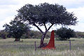 Landschaft Namibia anagoria.JPG