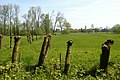 Leiemeersen , typisch rivierlandschap te Sint-Martens-Latem - 372269 - onroerenderfgoed.jpg