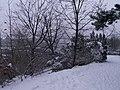 Letenské sady - panoramio (124).jpg