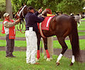 "Lexington Kentucky - Keeneland Race Track ""-1 In The Paddock"" (2144136718) (2).jpg"