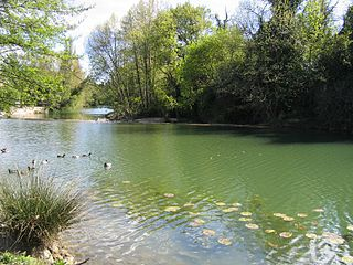 Lez (river) river in France, tributary of the Mediterranean Sea