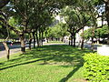 LiMing Village Green Park Way.JPG