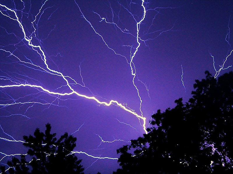 Lightning forks expand over the sky, flashing over black trees in a purple sky.