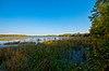 Lily Lake.jpg