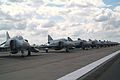 Line up of Phabulous Phantoms (3610020783).jpg