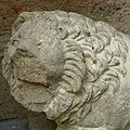 Lion étrusque.JPG