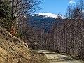 Lisina, Serbia - panoramio (8).jpg