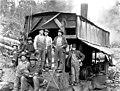 Logging crew and donkey engine, Snohomish County, ca 1913 (PICKETT 131).jpeg