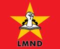Logo LMND.png