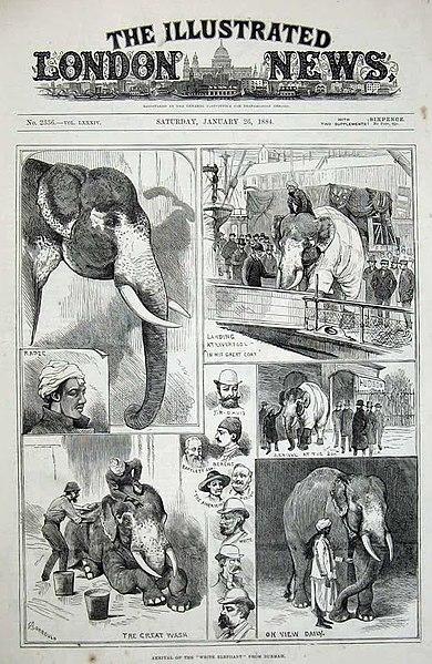 File:London Daily News - January 26 1884.jpg
