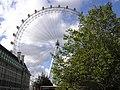 London Eye from Jubilee Gardens - panoramio.jpg