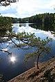 Lone pine, pristine lake - panoramio.jpg