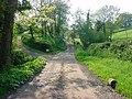 Longhope - Lane to Preece Moor Farm - geograph.org.uk - 167942.jpg