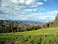 Looking down (NE) from Pajarito Mountain, Ski Slope, Los Alamos, NM - panoramio.jpg
