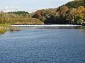 Lopwell Dam at high tide.jpg