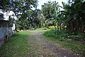 Lucena city, San Andres St. - panoramio - evert1949 (7).jpg