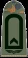 Luftwaffe-134-Faehnrich.png