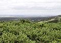 Lulworth Range - geograph.org.uk - 1521707.jpg